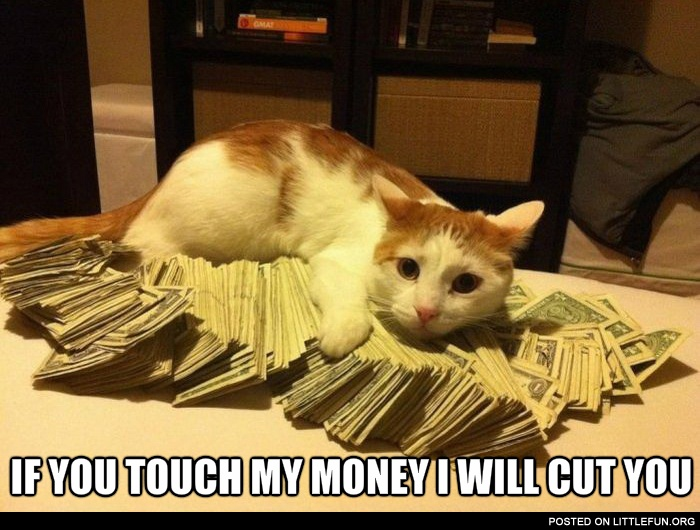 If you touch my money I will cut you.