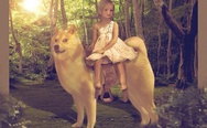 Chloe on doge.