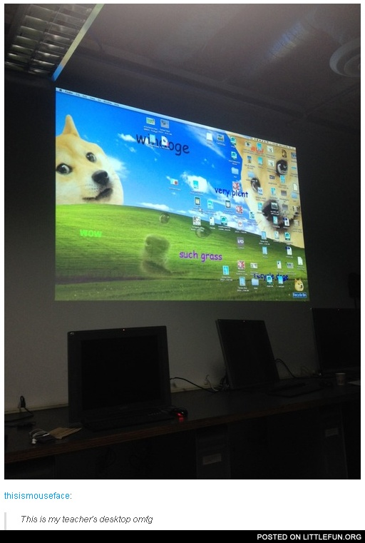 This is my teacher's desktop. Doge.
