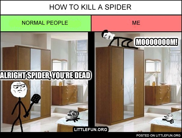 How to kill a spider.