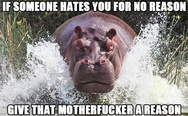 If someone hates you for no reason give that motherf**ker a reason. Hippo.