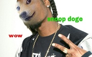 Snoop Doge. Such rap, wow.