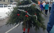 The walking Christmas tree. It's just tired of your Christmas bullsh*t and went to the forest.