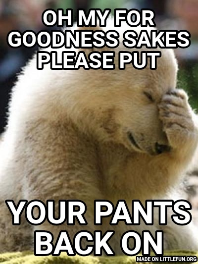 Facepalm Bear: Oh my for goodness sakes please put, Your pants back on